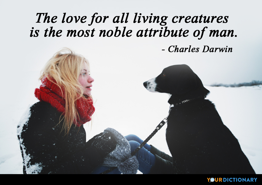 Quotes By Charles Darwin