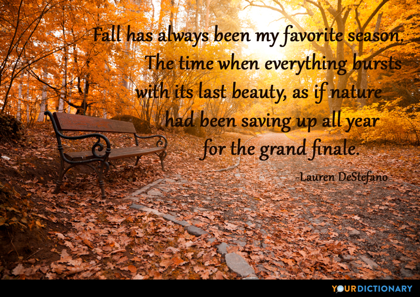 Fall Quotes: Fall Has Always Been My Favorite Season. The Time