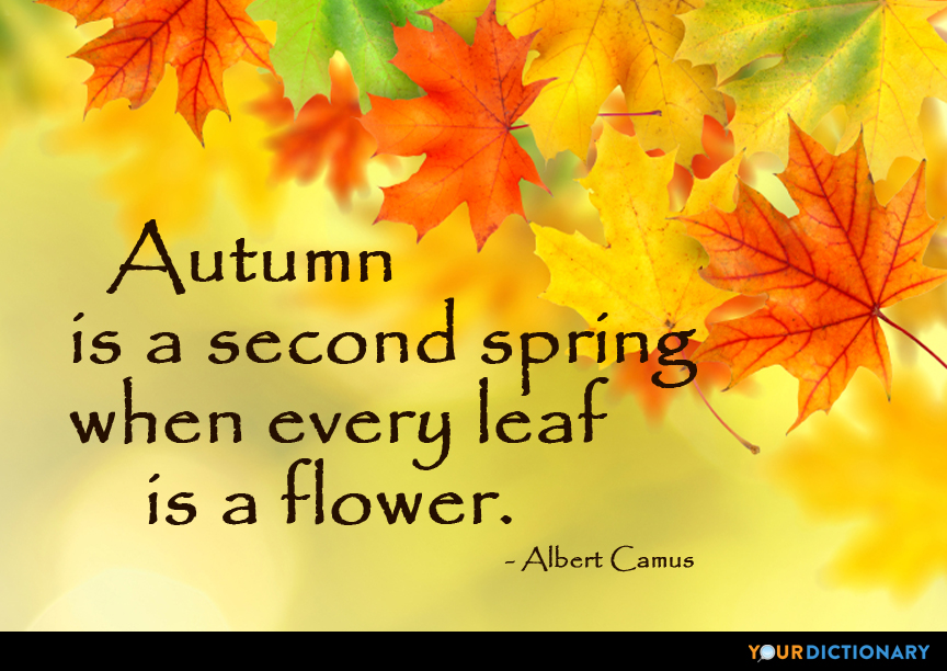 Autumn is a second Spring when every leaf is a flower. - Albert Camus Quote