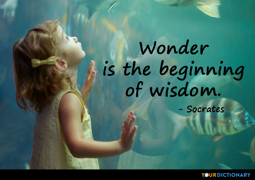 Wonder Is The Beginning Of Wisdom Socrates Quote
