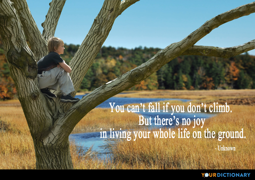 You Can't Fall If You Don't Climb But There's No Joy In Li New Whole Life Quote