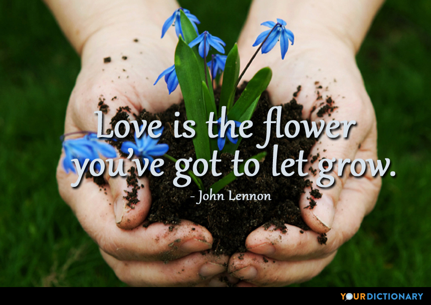 flower quotes quotes about flower yourdictionary