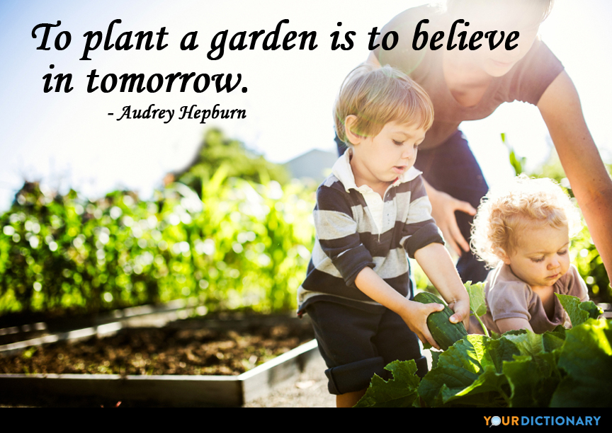 Plant Quotes Quotes About Plant 2 Yourdictionary