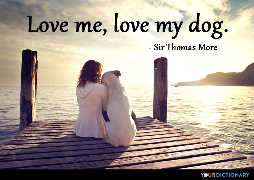 Love Me Love My Dog Sir Thomas More Quote Mesmerizing I Love My Dog Quotes