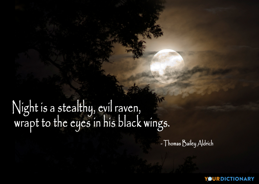 Sayings About Ravens: Night Is A Stealthy, Evil Raven, Wrapt To The...