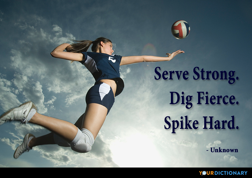 Volleyball Quotes Volleyball Quotes Volleyball Quotes